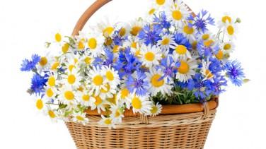 Düğün Çiçek Sepetlerinin Önemi