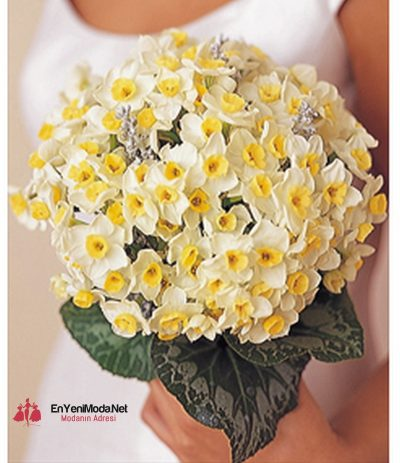 sarı renk 2016 Nişan Çiçeği